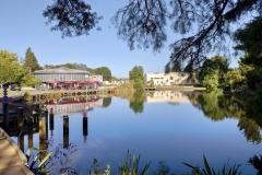 Oranga Lake, University of Waikato.
